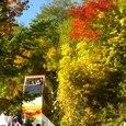 秋の豊平峡