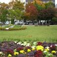 秋深まる大通公園